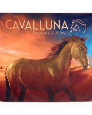 Cavalluna_Decke_02